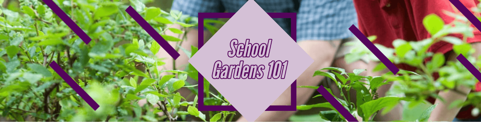 school gardens website.png